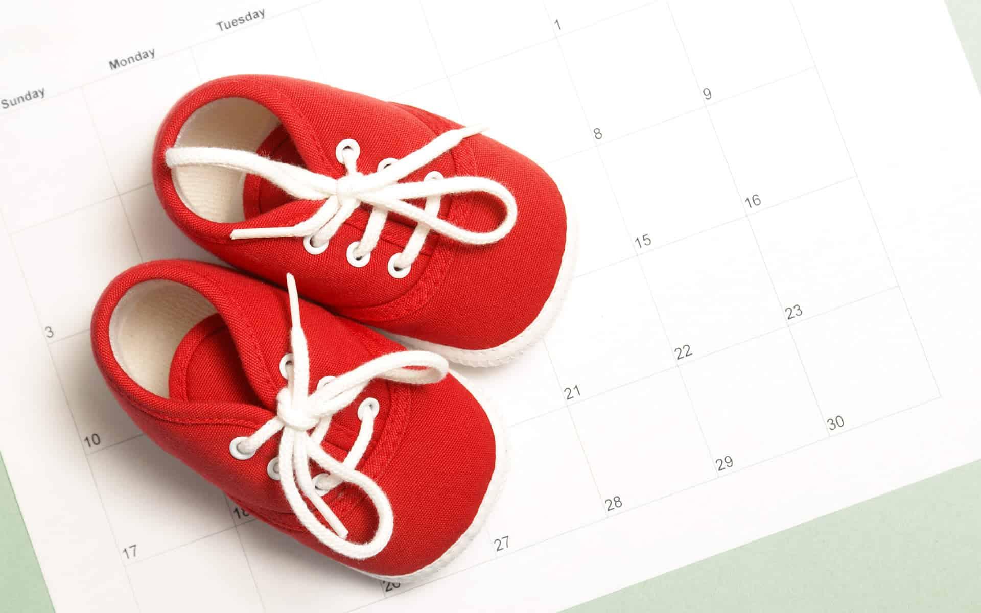 Geburtsterminrechner Zeugung